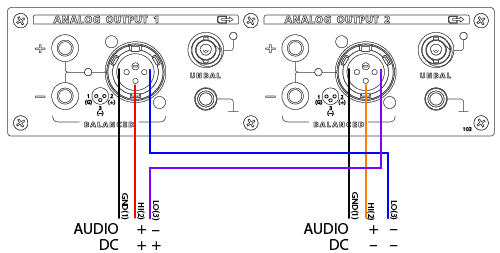 2-channel analog output module showing special wiring, pin 3 channels swapped